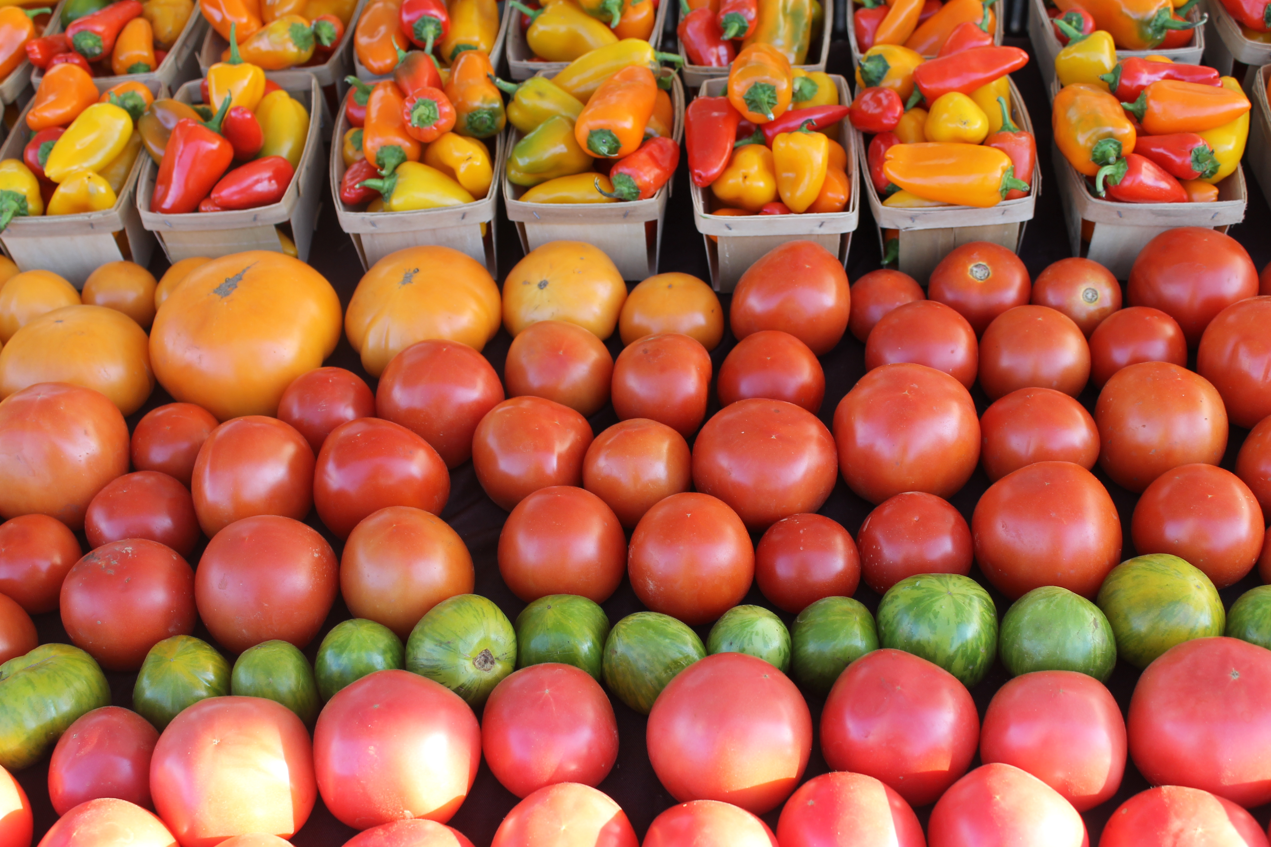 Table filled with ripe tomatoes